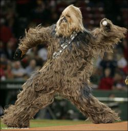 Let the Wookie pitch